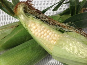 Fresh corn from the Ocean City farmer's market